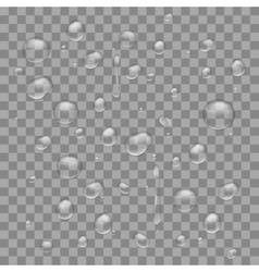 Water drops on transparent background vector