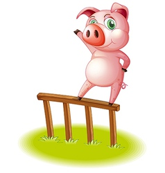 A pig standing above the wooden fence vector image vector image