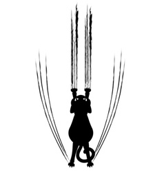 Black cat silhouette with scratches vector