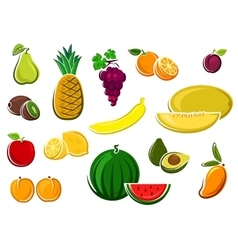 Juicy healthy fresh isolated fruits vector