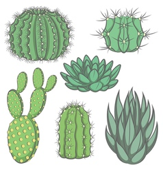 Set of isolated colored cactus vector