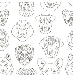 Different dogs breed vector