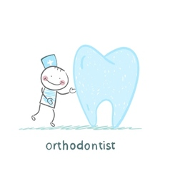 orthodontist is with great teeth vector image vector image