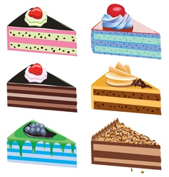 Cake slices vector