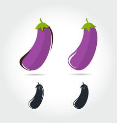 eggplant fruit vector image