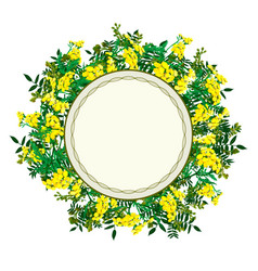 Flower frame with yellow tansy vector