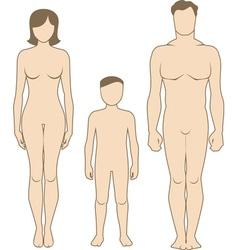 Human body vector
