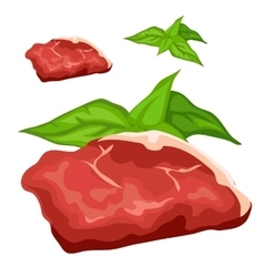 Raw meat steak with herbs food isolated vector