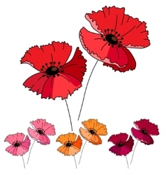 Stylized cute red poppy isolated on white vector image