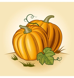 Retro pumpkins vector