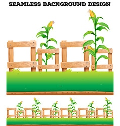 Fence and corns on the ground vector image vector image