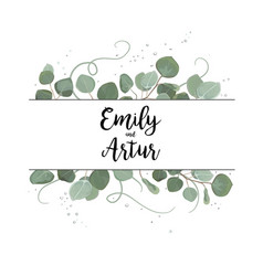 Floral card design eucalyptus silve dollar branch vector