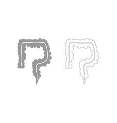 Intestine the grey set icon vector