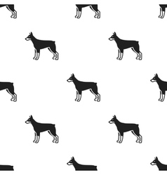 Doberman icon in black style for web vector image