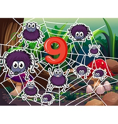 Number nine with nine spiders on web vector