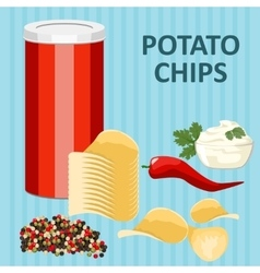Spicy potato chips vector image vector image
