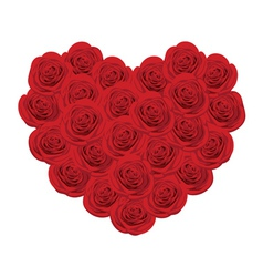 Red roses in shape of heart vector
