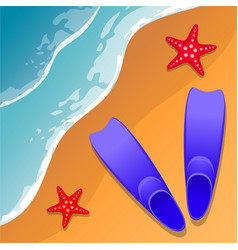 Beach background flippers and starfish on the vector