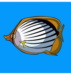 cartoon striped fish with yellow fins vector image vector image