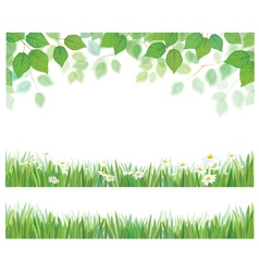 leaves grass flowers vector image vector image