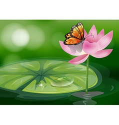 A butterfly at the top of a pink flower vector
