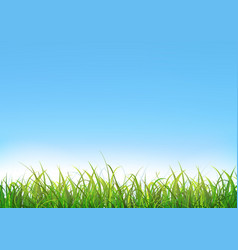blue sky background with green grass vector image vector image