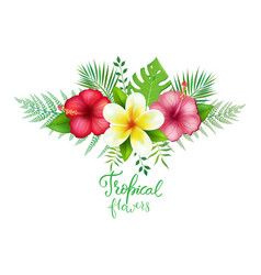 Bouquet of exotic tropical flowers vector