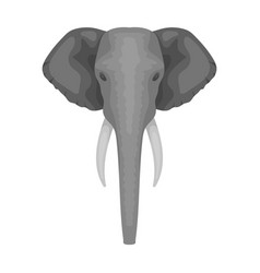 elephant icon in monochrome style isolated on vector image vector image