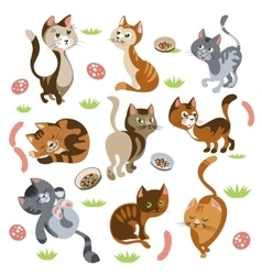 Funny Cats Characters Set vector image vector image