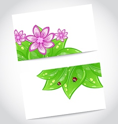 Set of eco friendly cards with green leaves vector image