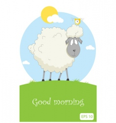 Nice sheep vector