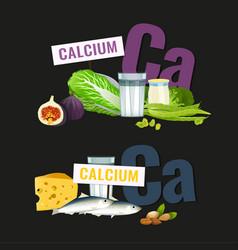 High calcium foods vector