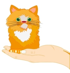 Redhead kitty on palm vector image vector image
