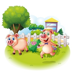 Two playful pigs near the wooden fence vector image vector image
