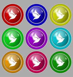 Dove icon sign symbol on nine round colourful vector