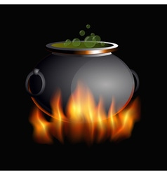 burning boiler vector image vector image
