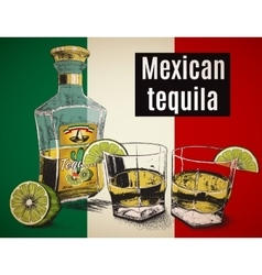Two stemware of tequila with bootle vector