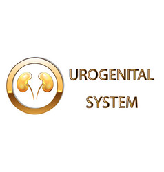 Urogenital systemkidneys symbol sign stylized vector