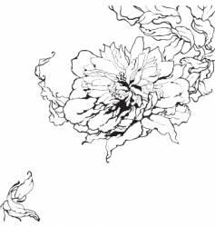 peony sketch vector image