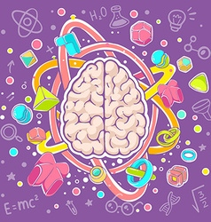 Colorful of model of human brain top view on vector