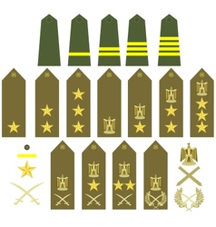 Egyptian army insignia vector