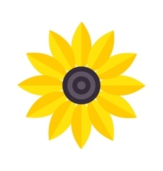 Yellow flower isolated vector