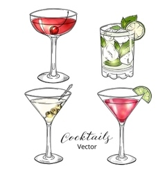 Set of hand drawn alcoholic cocktails isolated on vector