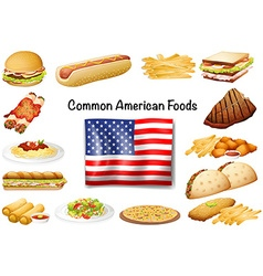 Different common American food set vector image vector image