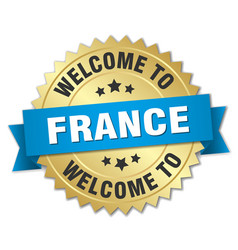 France 3d gold badge with blue ribbon vector