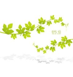 green leaf background vector image