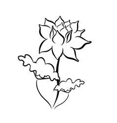 Sketch line drawing of lotus flower vector