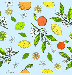 seamless pattern with lemons oranges limes vector image vector image