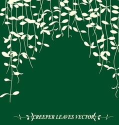 vine leaves vector image