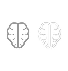 brain the grey set icon vector image